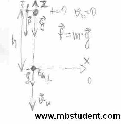 Mechanics kinematics - free fall of material point.